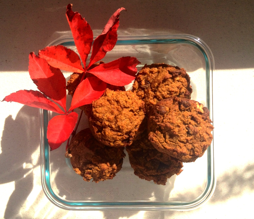GUILTLESS PALEO PUMPKIN CHOCOLATE CHIP MUFFINS! (+ more fall recipes)